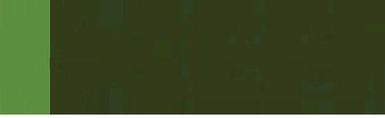 Commercial Equipment Finance, Inc. (CEFI)